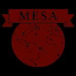 MESA Groningen